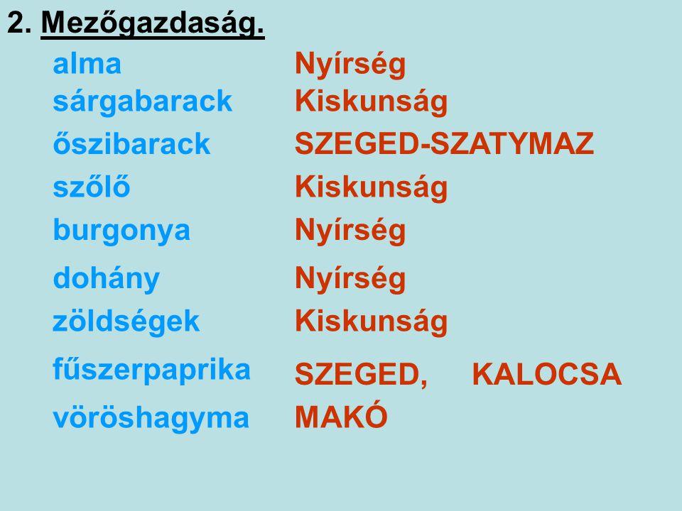 SZEGED - ALGYŐ BÁNYÁSZAT Tk.: 178.-179.