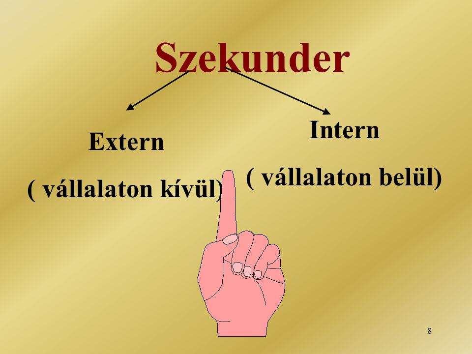 8 Szekunder Extern ( vállalaton kívül) Intern ( vállalaton belül)
