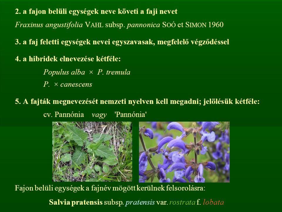 Fajon belüli egységek a fajnév mögött kerülnek felsorolásra: Salvia pratensis subsp. pratensis var. rostrata f. lobata