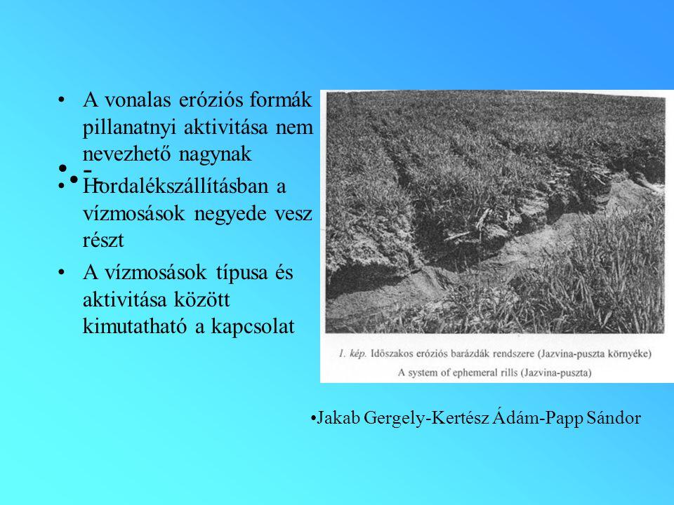 A vonalas eróziós formák pillanatnyi aktivitása nem nevezhető nagynak Hordalékszállításban a vízmosások negyede vesz részt A vízmosások típusa és aktivitása között kimutatható a kapcsolat - - Jakab Gergely-Kertész Ádám-Papp Sándor