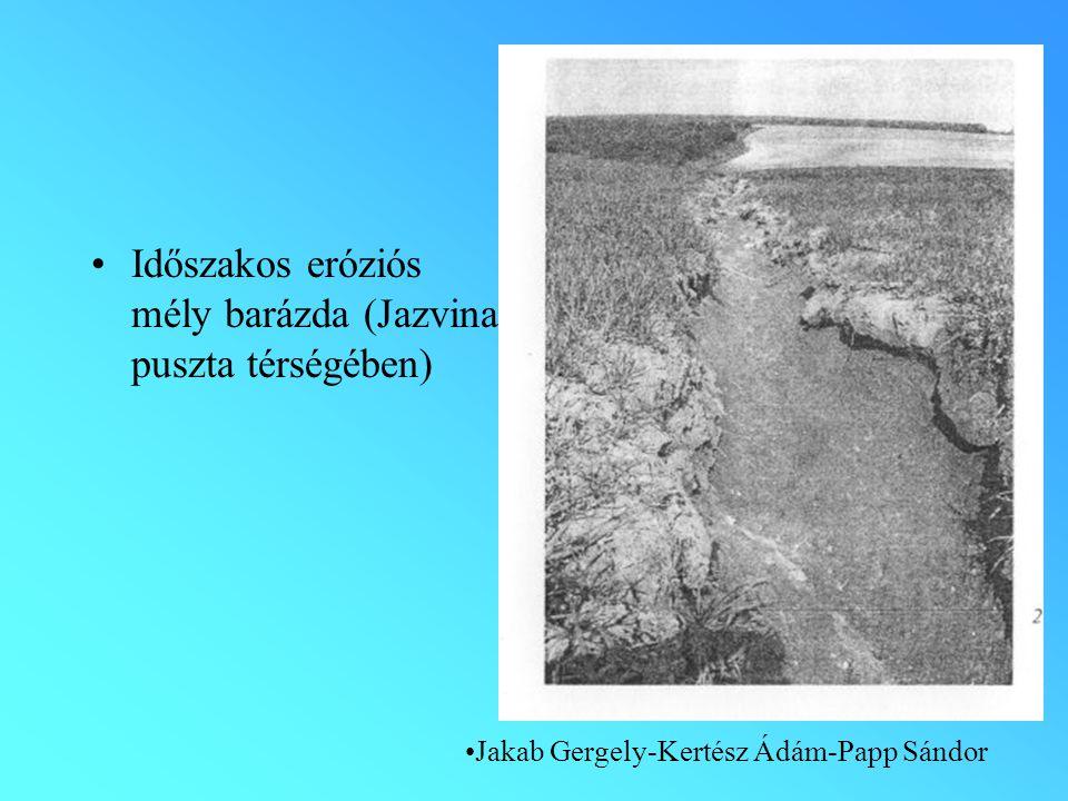 Időszakos eróziós mély barázda (Jazvina puszta térségében) Jakab Gergely-Kertész Ádám-Papp Sándor
