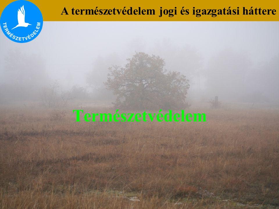 Természetvédelem A természetvédelem jogi és igazgatási háttere
