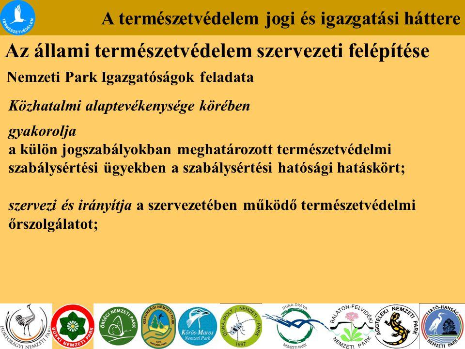 A természetvédelem jogi és igazgatási háttere Az állami természetvédelem szervezeti felépítése Nemzeti Park Igazgatóságok feladata Közhatalmi alaptevékenysége körében gyakorolja a külön jogszabályokban meghatározott természetvédelmi szabálysértési ügyekben a szabálysértési hatósági hatáskört; szervezi és irányítja a szervezetében működő természetvédelmi őrszolgálatot;