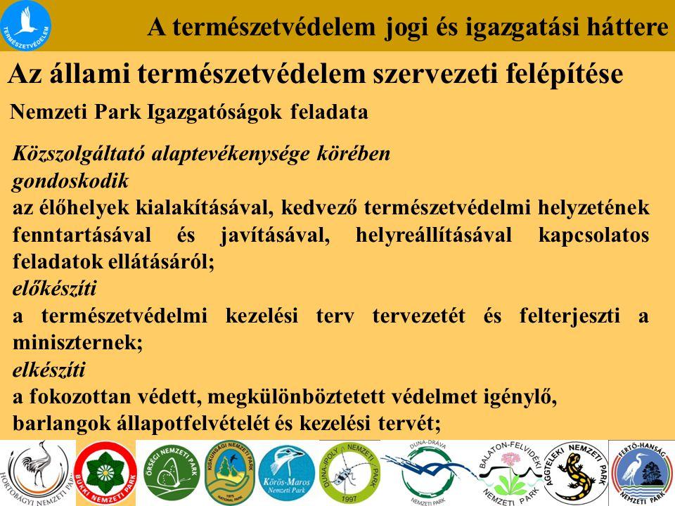 A természetvédelem jogi és igazgatási háttere Az állami természetvédelem szervezeti felépítése Nemzeti Park Igazgatóságok feladata Közszolgáltató alaptevékenysége körében gondoskodik az élőhelyek kialakításával, kedvező természetvédelmi helyzetének fenntartásával és javításával, helyreállításával kapcsolatos feladatok ellátásáról; előkészíti a természetvédelmi kezelési terv tervezetét és felterjeszti a miniszternek; elkészíti a fokozottan védett, megkülönböztetett védelmet igénylő, barlangok állapotfelvételét és kezelési tervét;