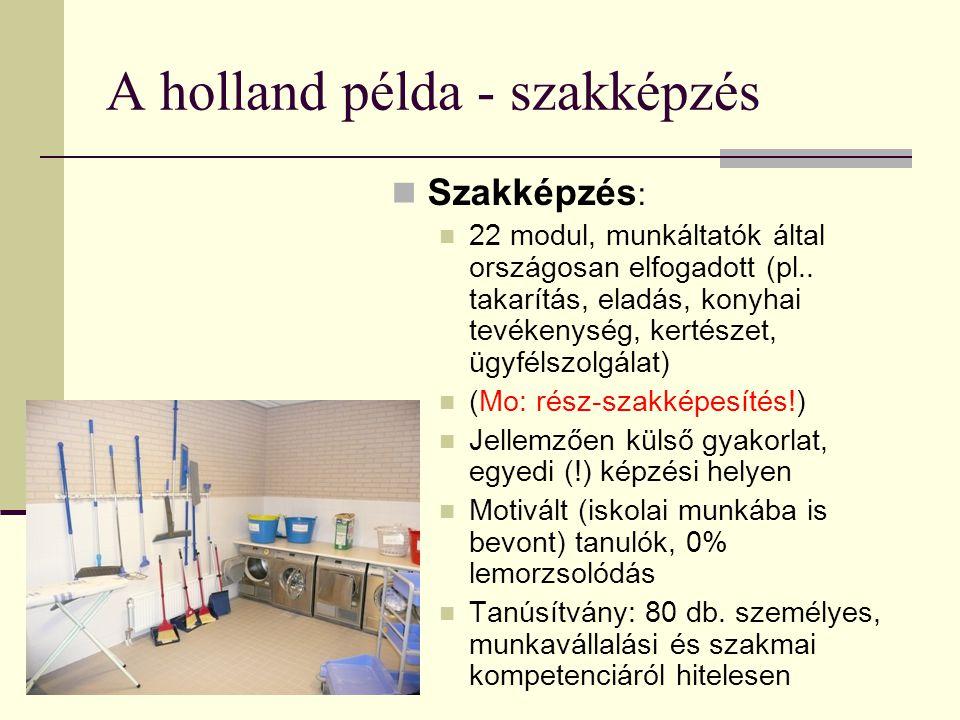 A holland példa - szakképzés Szakképzés : 22 modul, munkáltatók által országosan elfogadott (pl.. takarítás, eladás, konyhai tevékenység, kertészet, ü