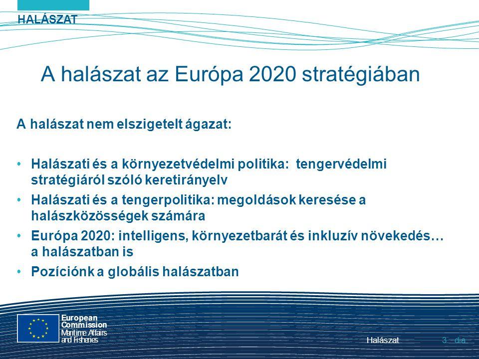 HALÁSZAT dia European Commission MaritimeAffairs andFisheries Halászat3.3. A halászat az Európa 2020 stratégiában A halászat nem elszigetelt ágazat: H