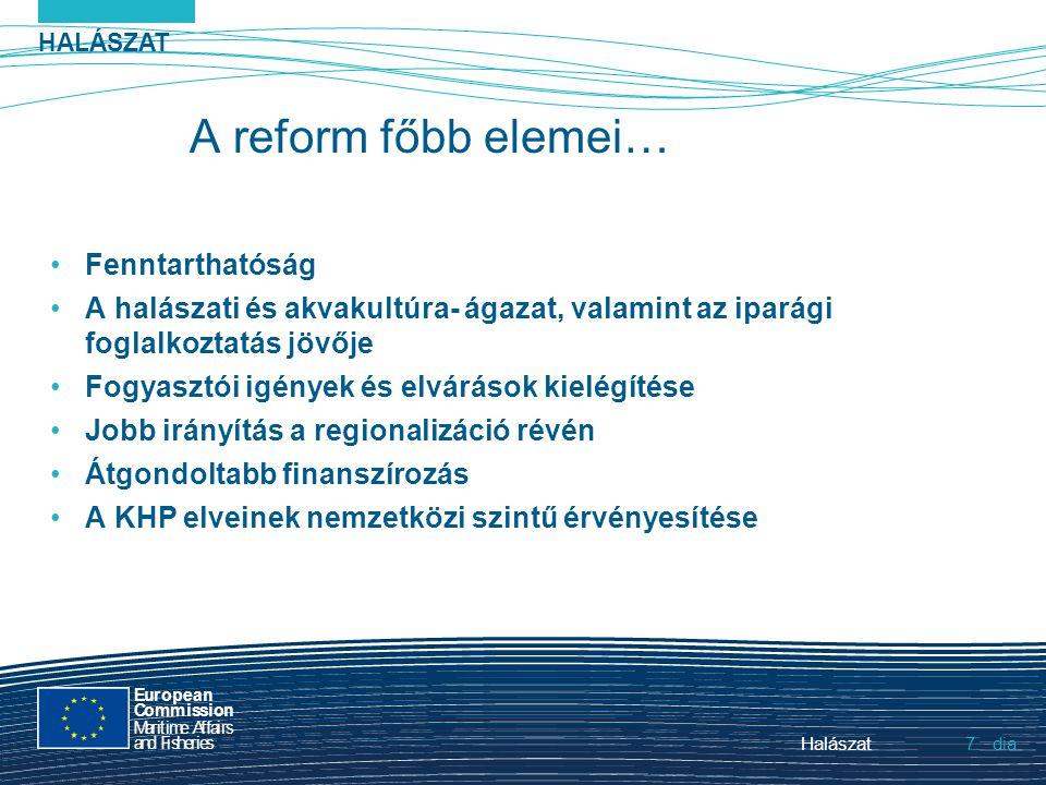 HALÁSZAT dia European Commission MaritimeAffairs andFisheries Halászat7.7. A reform főbb elemei… Fenntarthatóság A halászati és akvakultúra- ágazat, v