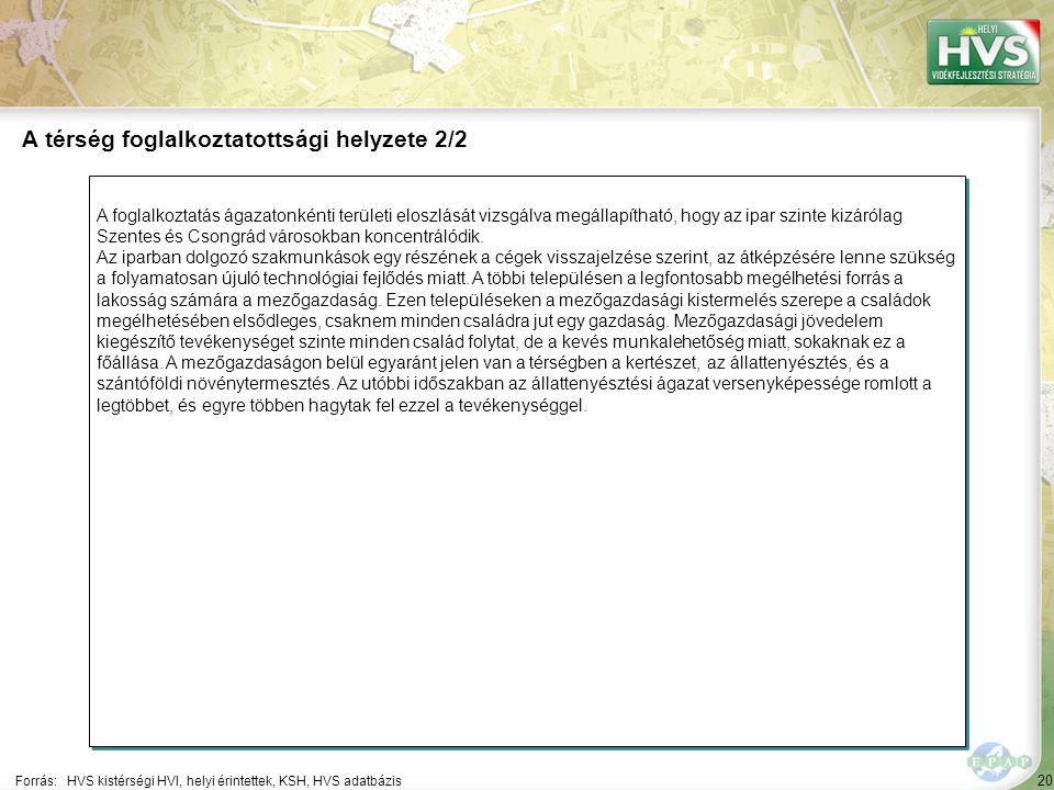 20 A foglalkoztatás ágazatonkénti területi eloszlását vizsgálva megállapítható, hogy az ipar szinte kizárólag Szentes és Csongrád városokban koncentrálódik.