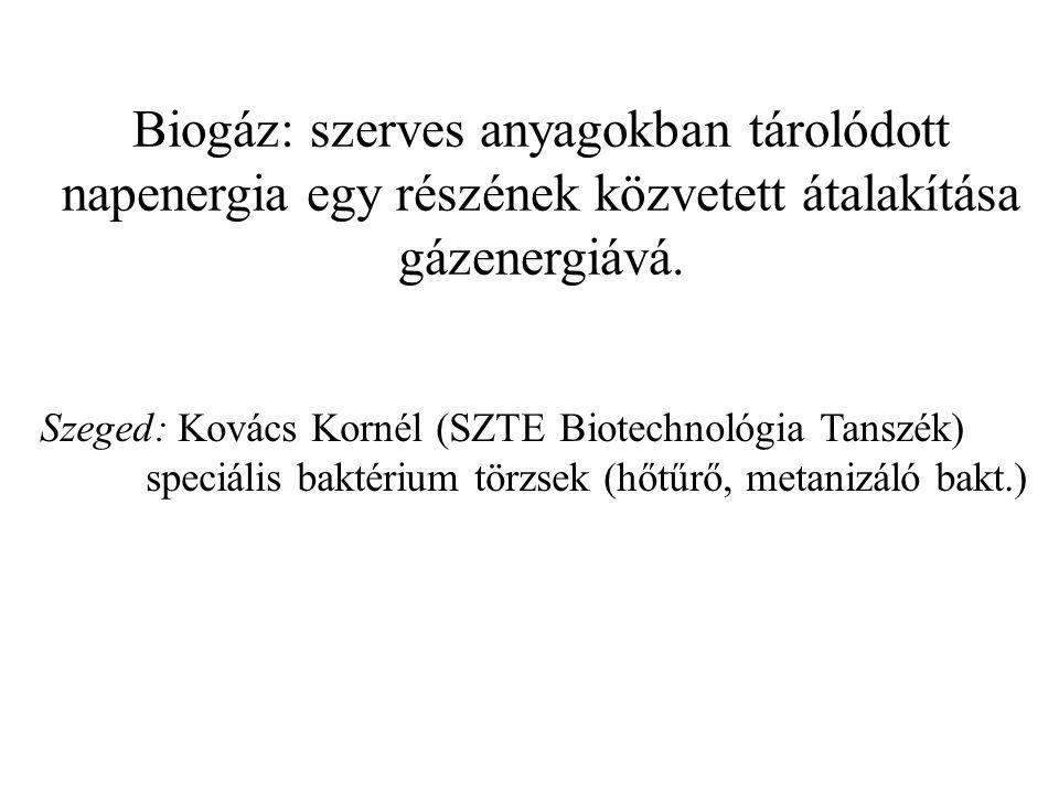 Biogáz: szerves anyagokban tárolódott napenergia egy részének közvetett átalakítása gázenergiává. Szeged: Kovács Kornél (SZTE Biotechnológia Tanszék)