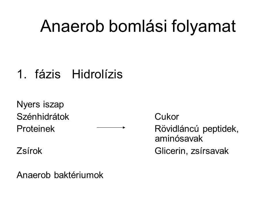 Anaerob bomlási folyamat 1.fázisHidrolízis Nyers iszap SzénhidrátokCukor ProteinekRövidláncú peptidek, aminósavak ZsírokGlicerin, zsírsavak Anaerob ba