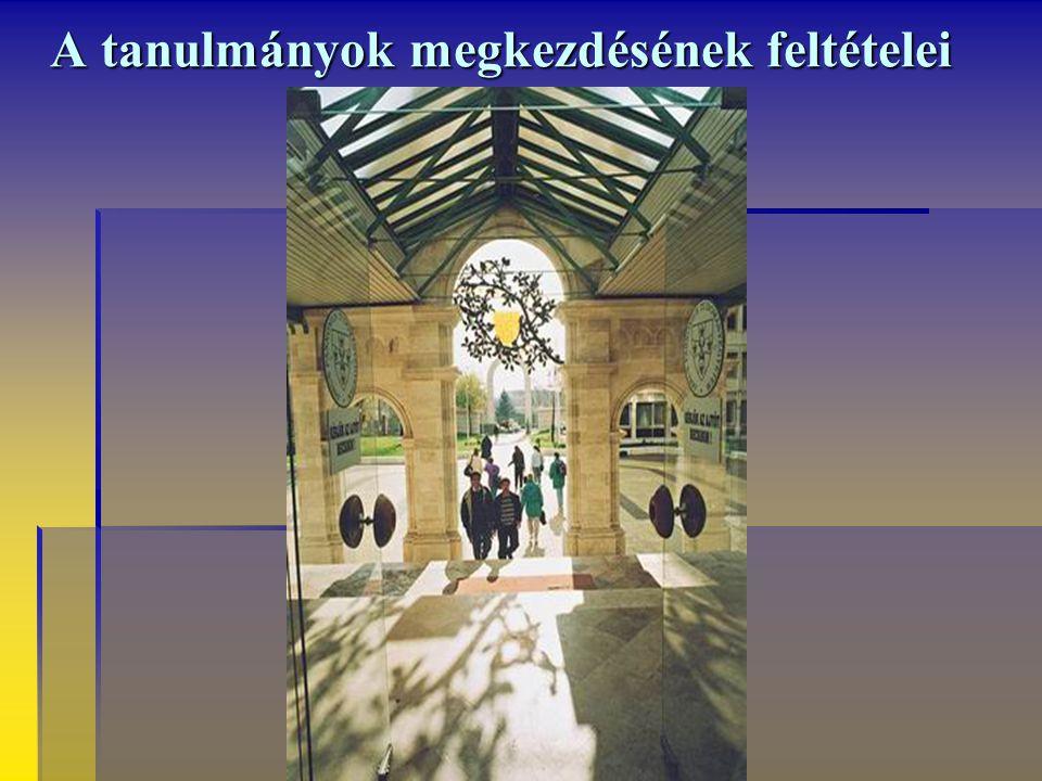 Járj velem! Bölcsészkari Vademecum Kézbeli könyvecske, kézben hordozó könyvecske – így nevezik a régi időkben magyarul az olyan könyveket, amelyek a m