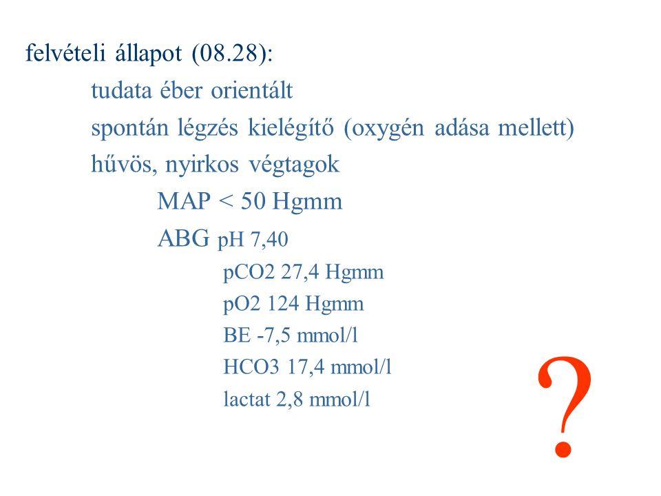 felvételi állapot (08.28): tudata éber orientált spontán légzés kielégítő (oxygén adása mellett) hűvös, nyirkos végtagok MAP < 50 Hgmm ABG pH 7,40 pCO