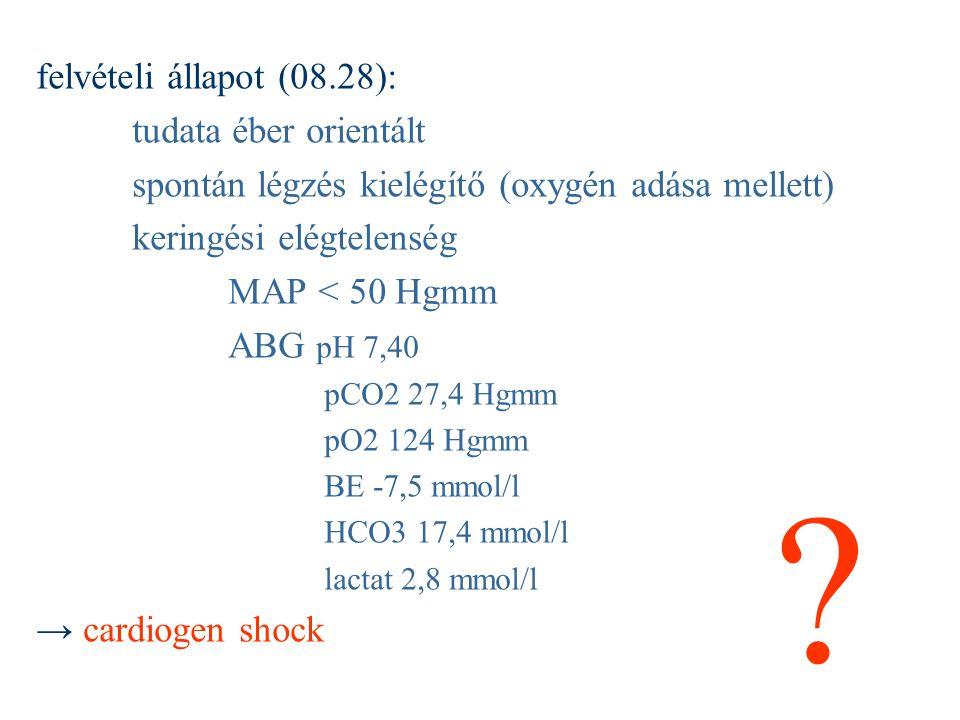 felvételi állapot (08.28): tudata éber orientált spontán légzés kielégítő (oxygén adása mellett) keringési elégtelenség MAP < 50 Hgmm ABG pH 7,40 pCO2