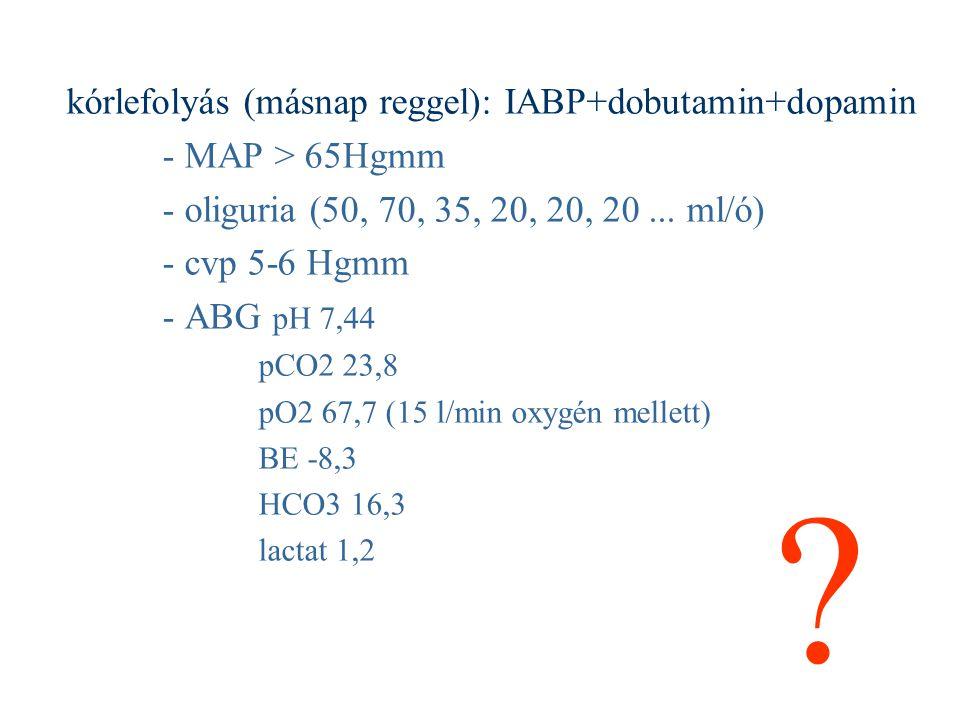 kórlefolyás (másnap reggel): IABP+dobutamin+dopamin - MAP > 65Hgmm - oliguria (50, 70, 35, 20, 20, 20... ml/ó) - cvp 5-6 Hgmm - ABG pH 7,44 pCO2 23,8