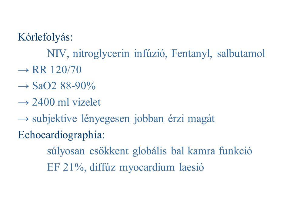 Kórlefolyás: NIV, nitroglycerin infúzió, Fentanyl, salbutamol → RR 120/70 → SaO2 88-90% → 2400 ml vizelet → subjektive lényegesen jobban érzi magát Ec