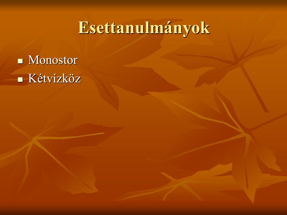 Esettanulmányok Monostor Monostor Kétvízköz Kétvízköz