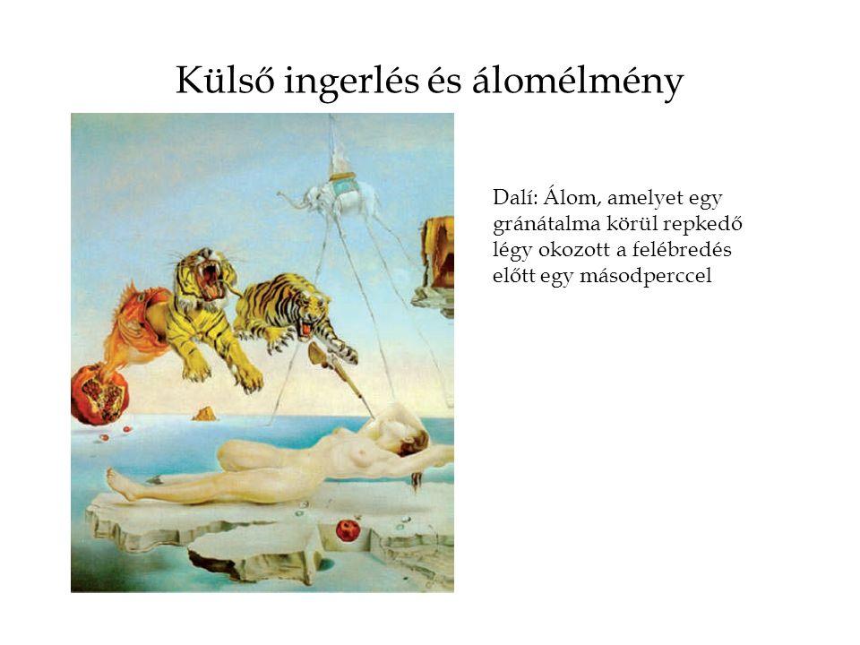 Külső ingerlés és álomélmény Dalí: Álom, amelyet egy gránátalma körül repkedő légy okozott a felébredés előtt egy másodperccel