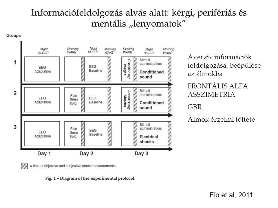 """Információfeldolgozás alvás alatt: kérgi, perifériás és mentális """"lenyomatok"""" Flo et al, 2011 Averzív információk feldolgozása, beépülése az álmokba F"""