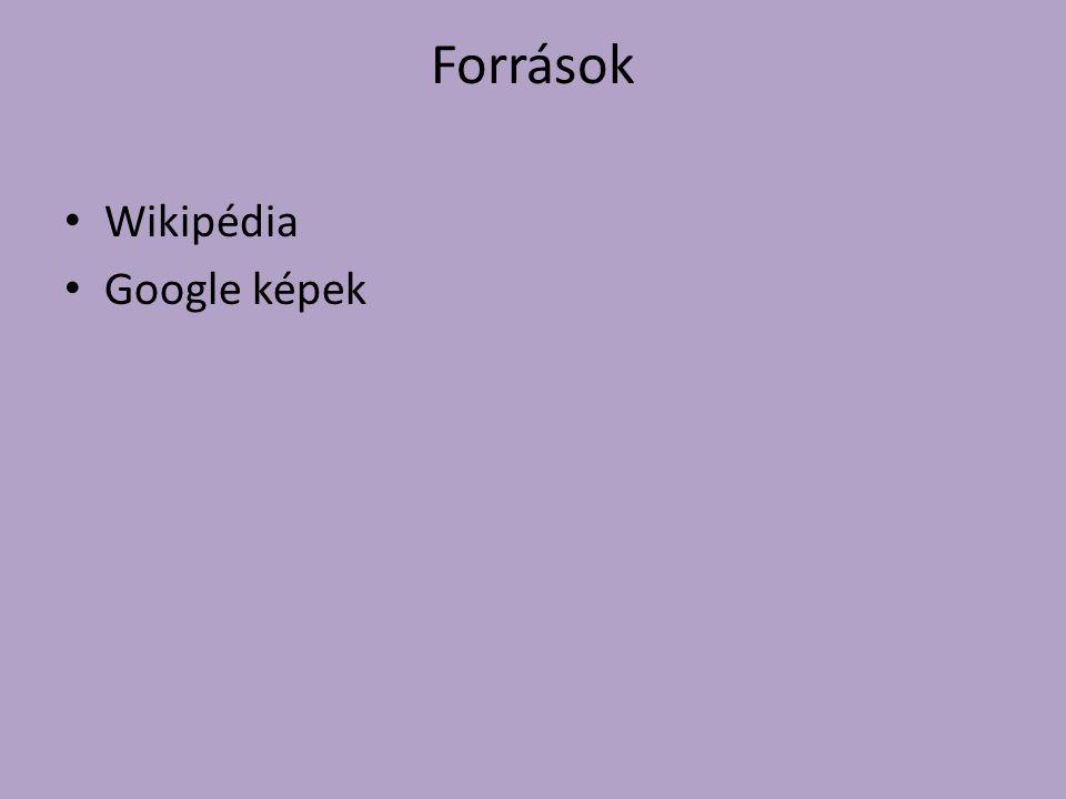 Források Wikipédia Google képek