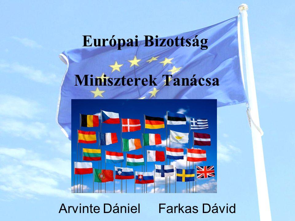 EURÓPAI BIZOTTSÁG Az Európai Bizottság az Európai Unió végrehajtó szerve.