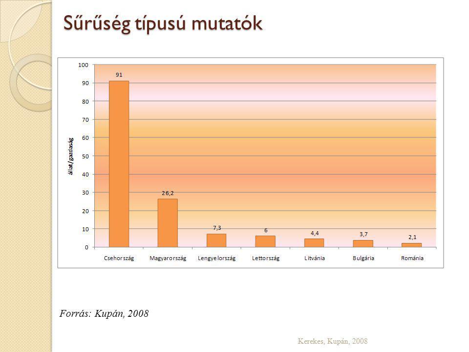 Sűrűség típusú mutatók Kerekes, Kupán, 2008 Forrás: Kupán, 2008
