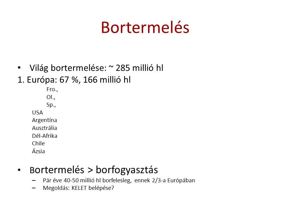 Bortermelés Világ bortermelése: ~ 285 millió hl 1. Európa: 67 %, 166 millió hl Fro., Ol., Sp., USA Argentína Ausztrália Dél-Afrika Chile Ázsia B orter