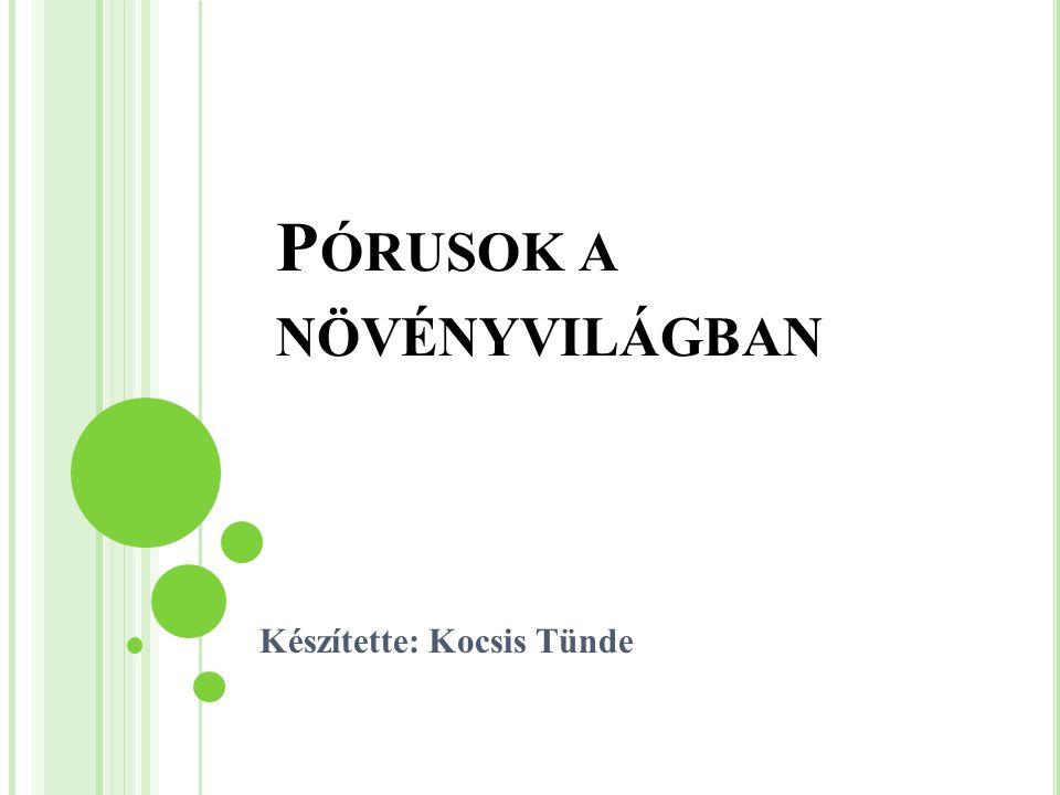 P ÓRUSOK A NÖVÉNYVILÁGBAN Készítette: Kocsis Tünde