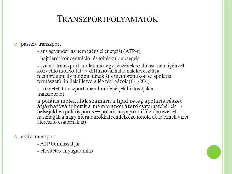 T RANSZPORTFOLYAMATOK passzív transzport - anyagvándorlás nem igényel energiát (ATP-t) - hajtóerő: koncentráció- és töltéskülönbségek - szabad transzp