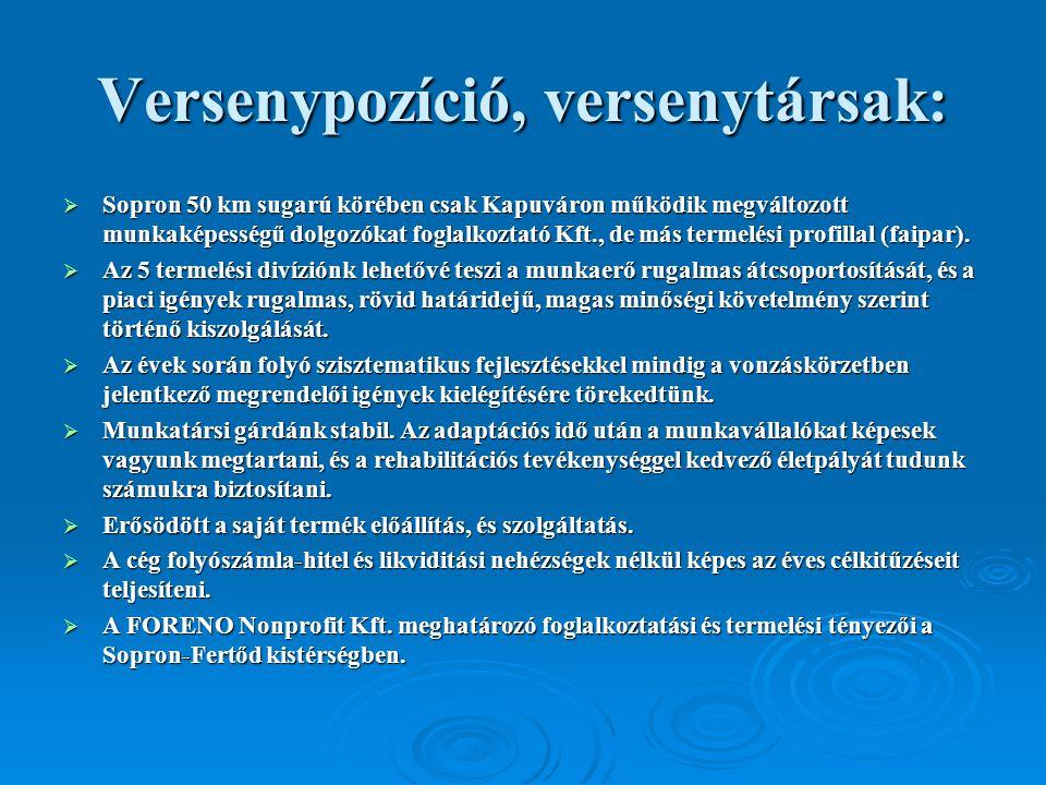 Versenypozíció, versenytársak:  Sopron 50 km sugarú körében csak Kapuváron működik megváltozott munkaképességű dolgozókat foglalkoztató Kft., de más