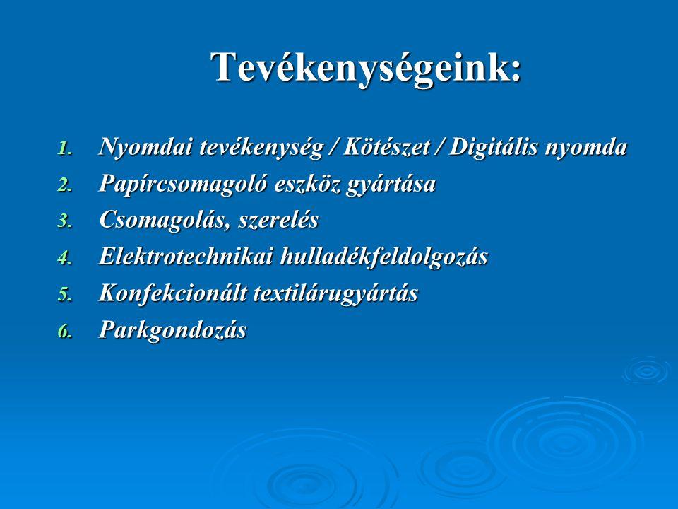Tevékenységeink: 1. Nyomdai tevékenység / Kötészet / Digitális nyomda 2. Papírcsomagoló eszköz gyártása 3. Csomagolás, szerelés 4. Elektrotechnikai hu