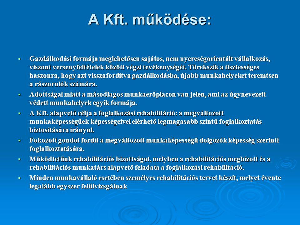 A Kft. működése:  Gazdálkodási formája meglehetősen sajátos, nem nyereségorientált vállalkozás, viszont versenyfeltételek között végzi tevékenységét.