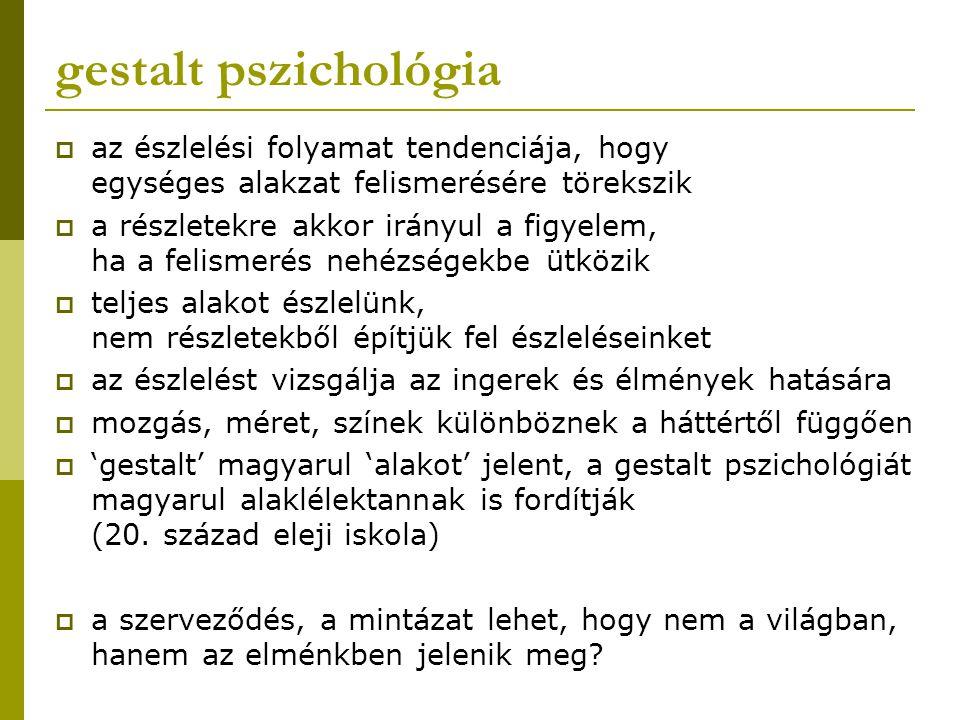 gestalt pszichológia  mi van a képen?
