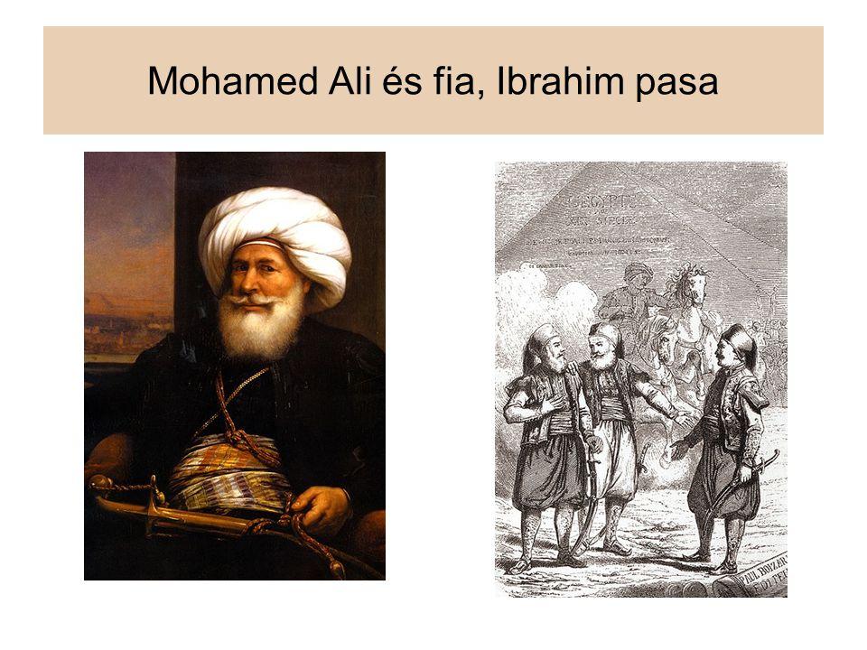 Mohamed Ali és fia, Ibrahim pasa