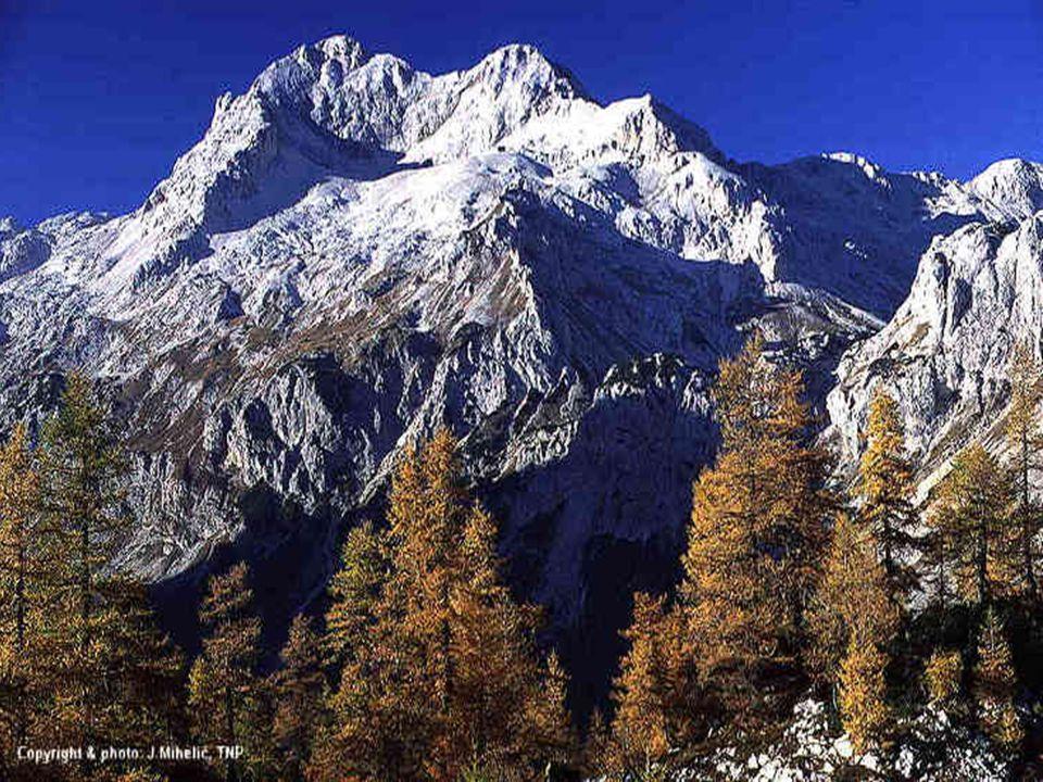 Júlia Alpok Azok a csúcsok, azok az árnyak, azok a völgyek, azok a tájak, a patakok, habos vízesések, valaha-volt múltamból idéznek.
