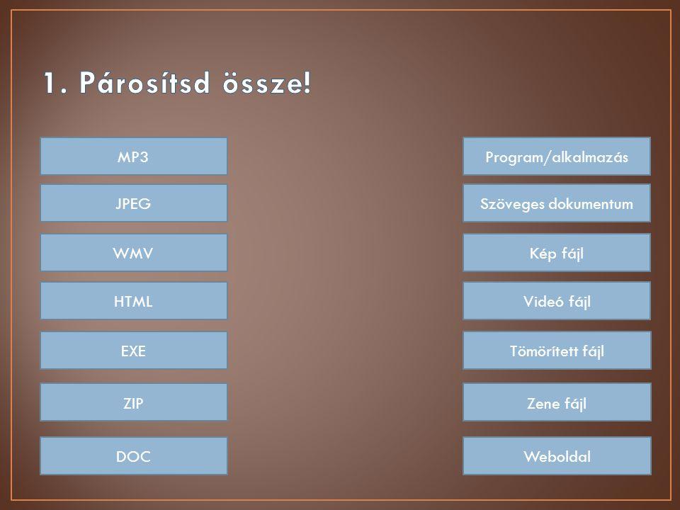 MP3 JPEG WMV HTML EXE ZIP DOC Program/alkalmazás Szöveges dokumentum Kép fájl Videó fájl Tömörített fájl Zene fájl Weboldal