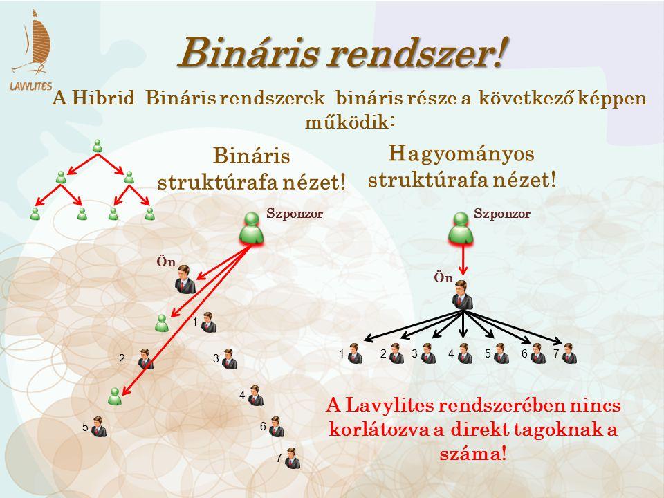 Bináris rendszer! 143 2 7 65 1 2 3 4 5 6 7 Hagyományos struktúrafa nézet! Bináris struktúrafa nézet! A Hibrid Bináris rendszerek bináris része a követ