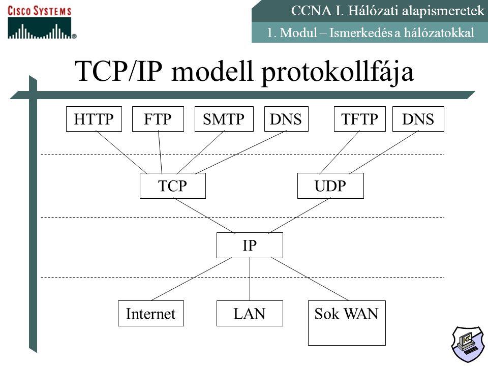 CCNA I. Hálózati alapismeretek 1. Modul – Ismerkedés a hálózatokkal TCP/IP modell protokollfája HTTPFTPSMTPDNSTFTPDNS TCPUDP IP InternetLANSok WAN