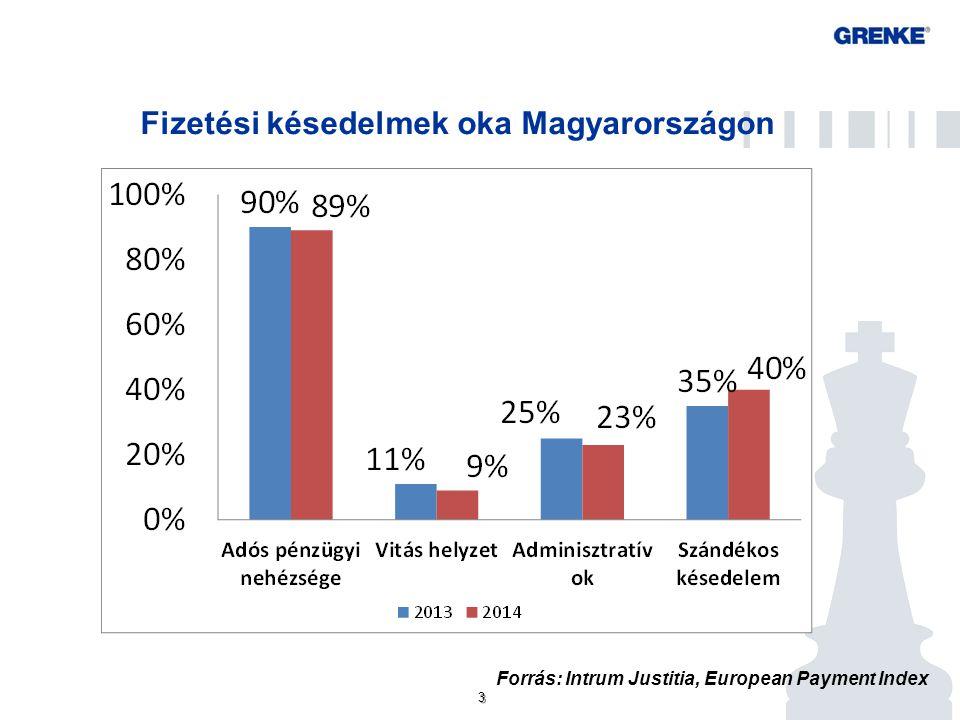 3 3 Fizetési késedelmek oka Magyarországon Forrás: Intrum Justitia, European Payment Index