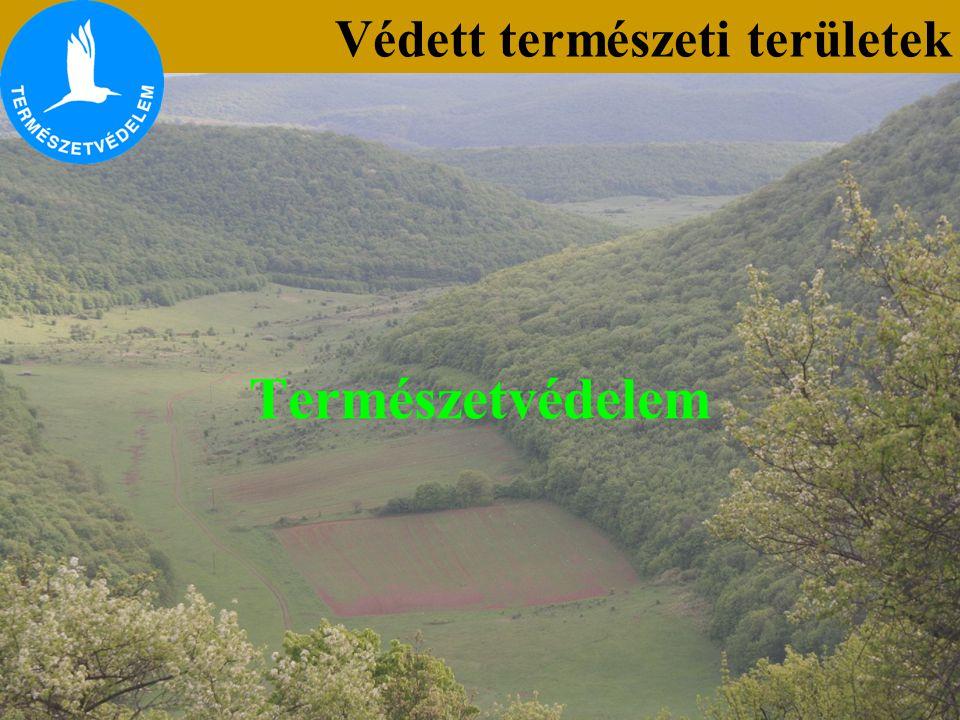A védett természeti területek kategóriái Védett természeti területek A.) Országos jelentőségű védett természeti területek 1.