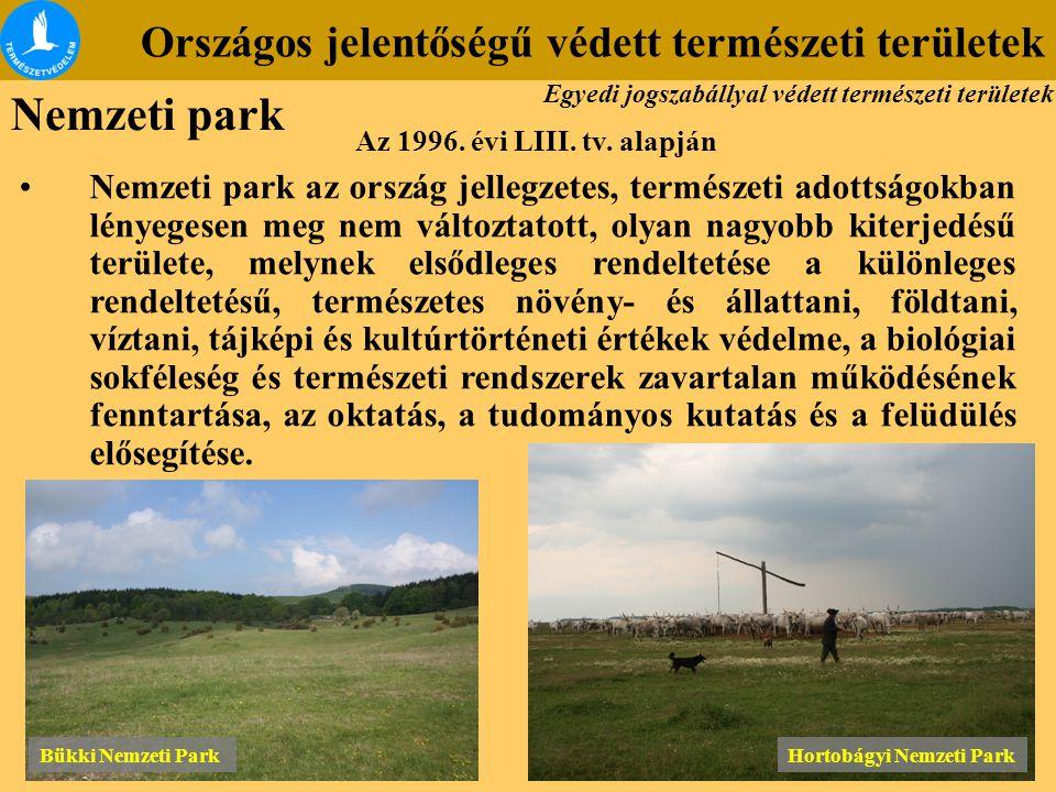 Nemzeti park Országos jelentőségű védett természeti területek Nemzeti park az ország jellegzetes, természeti adottságokban lényegesen meg nem változta