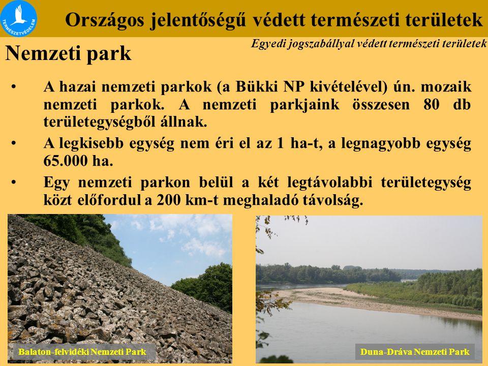 Országos jelentőségű védett természeti területek Balaton-felvidéki Nemzeti Park Duna-Dráva Nemzeti Park A hazai nemzeti parkok (a Bükki NP kivételével