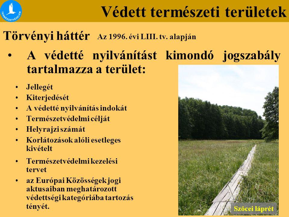 Védett természeti területek A védetté nyilvánítást kimondó jogszabály tartalmazza a terület: Jellegét Kiterjedését A védetté nyilvánítás indokát Termé