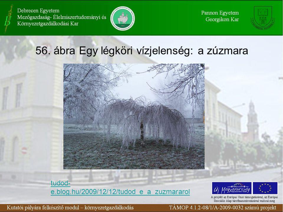 56. ábra Egy légköri vízjelenség: a zúzmara tudod- e.blog.hu/2009/12/12/tudod_e_a_zuzmararol