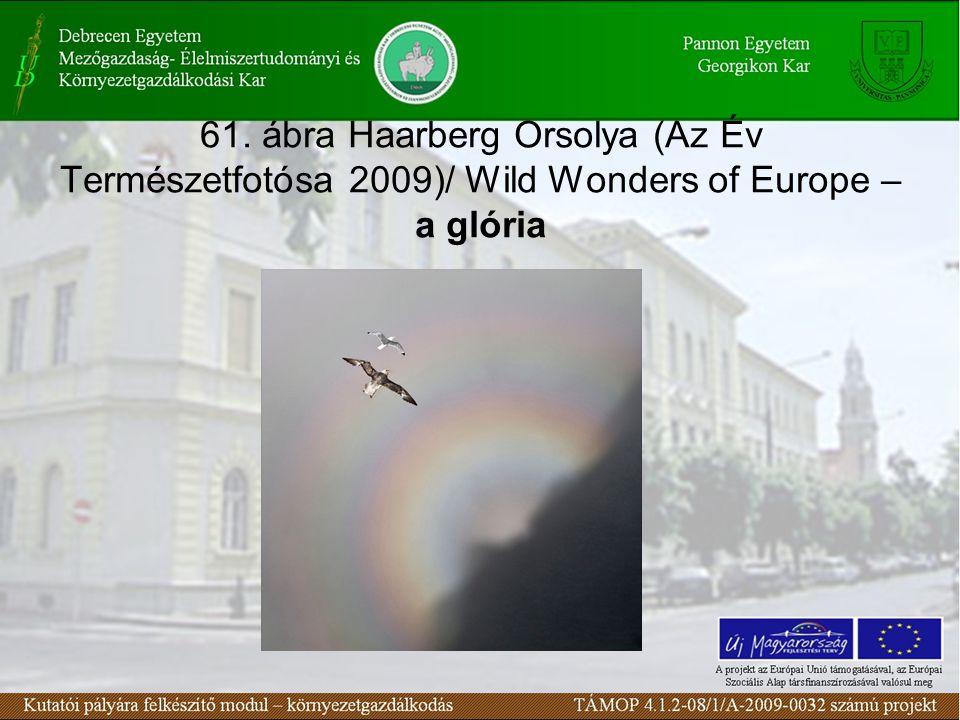 61. ábra Haarberg Orsolya (Az Év Természetfotósa 2009)/ Wild Wonders of Europe – a glória