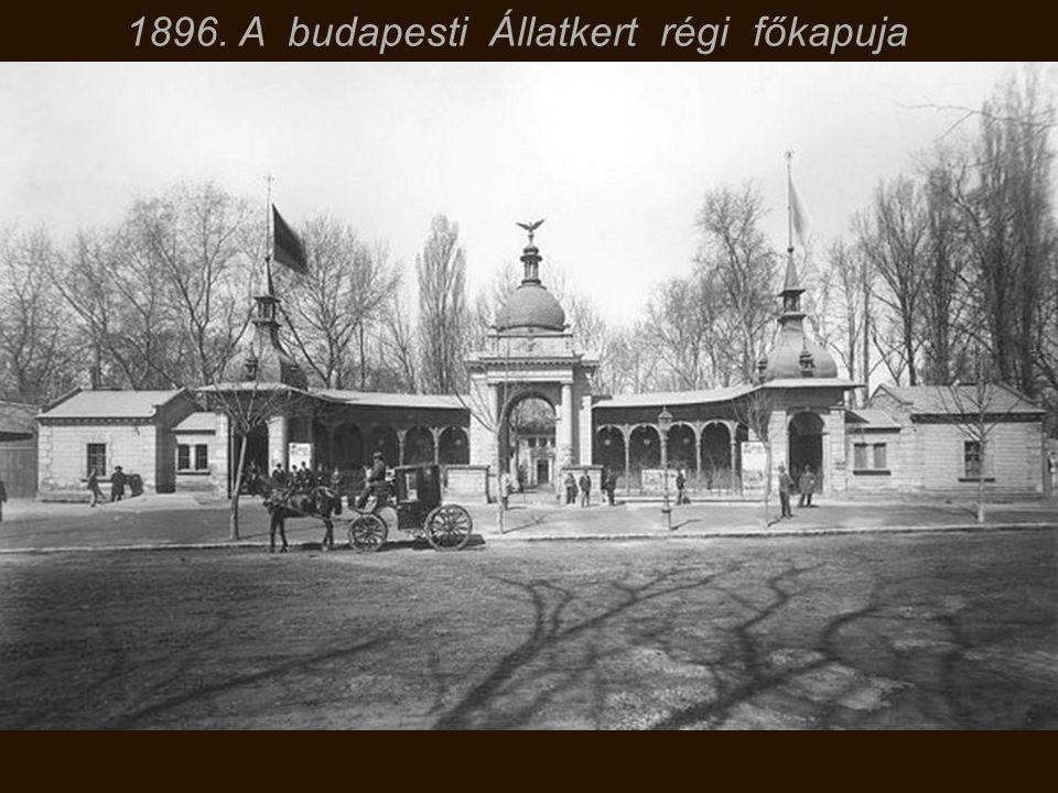 11969. Staller Ilona, későbbi Cicciolina 18 évesen Budapesten