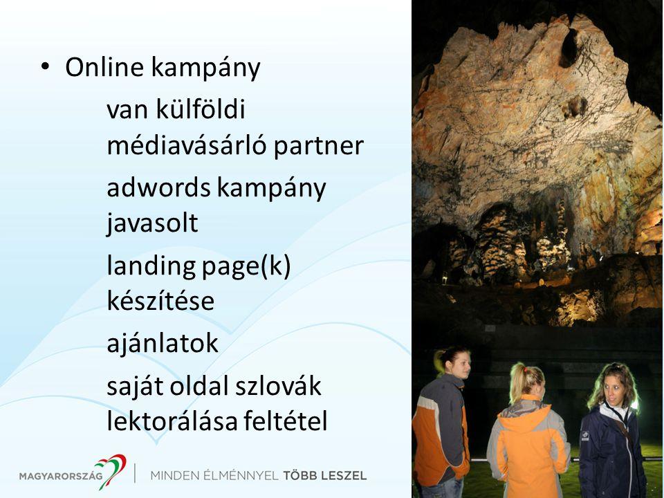 Online kampány van külföldi médiavásárló partner adwords kampány javasolt landing page(k) készítése ajánlatok saját oldal szlovák lektorálása feltétel