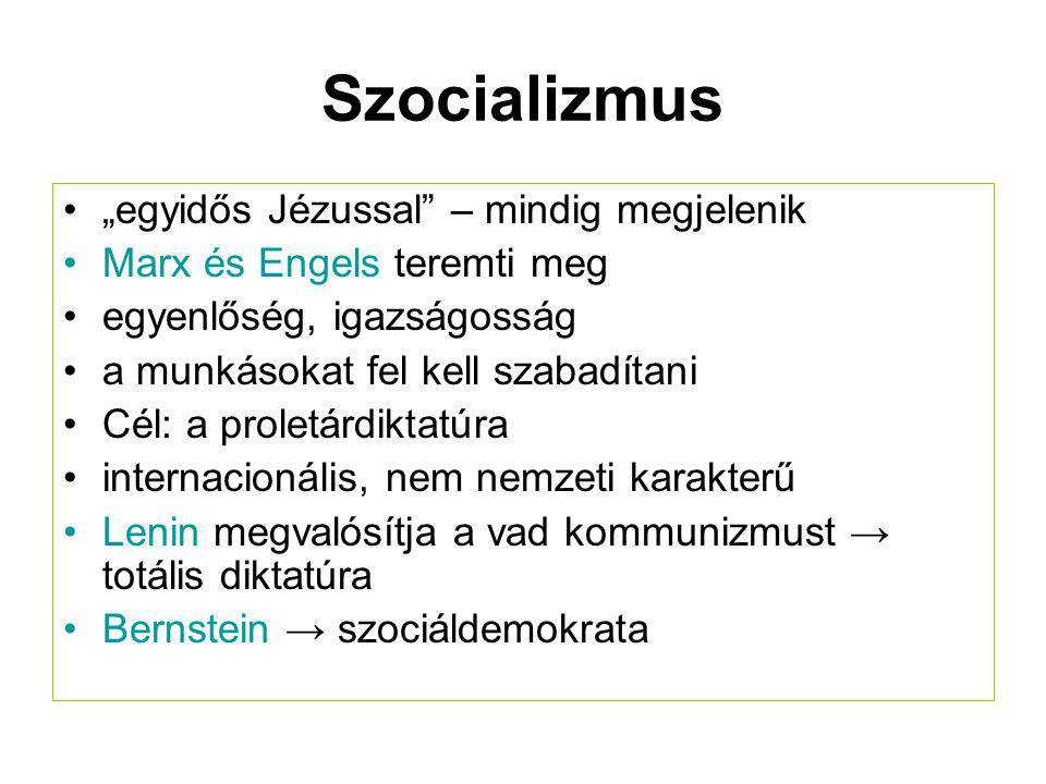 A pártrendszert meghatározó tényezők  kultúra, tradíciók  társadalmi struktúra  politikai tagoltság (pártosodási hajlam)  hatalmi szerkezet (két- vagy többpólusú)  állam-/uralmi forma (monarchia vagy köztársaság; Magyarország: parlamenti, egykamarás)  egységállam/szövetségi állam (Németországban pl.