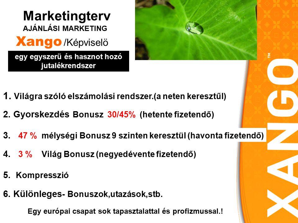 2. Gyorskezdés Bonusz 30/45% (hetente fizetendő) Marketingterv AJÁNLÁSI MARKETING 4.