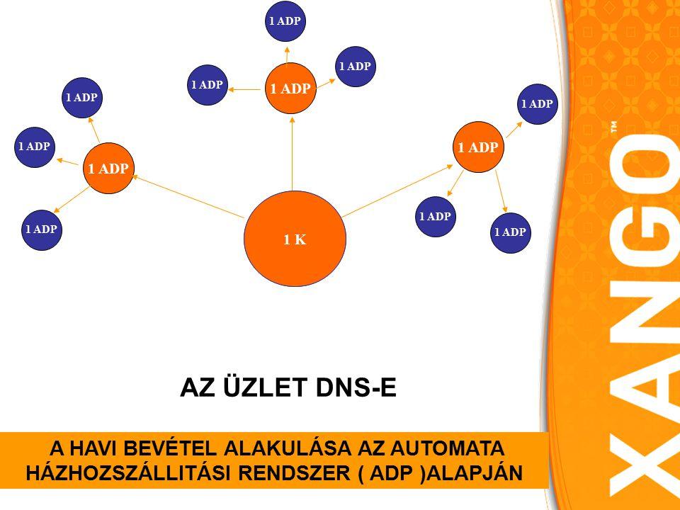 SIE 1ADP A HAVI BEVÉTEL ALAKULÁSA AZ AUTOMATA HÁZHOZSZÁLLITÁSI RENDSZER ( ADP )ALAPJÁN 1 K AZ ÜZLET DNS-E