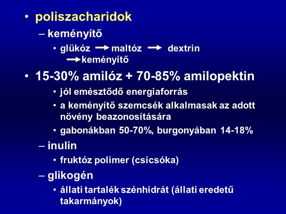 poliszacharidok –keményítő glükóz maltóz dextrin keményítő 15-30% amilóz + 70-85% amilopektin jól emésztődő energiaforrás a keményítő szemcsék alkalma